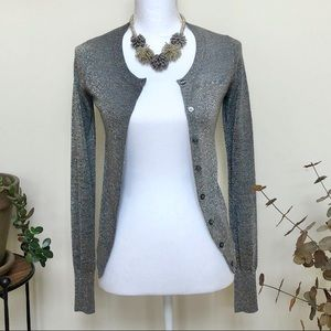 EXPRESS Silver Cardigan Sweater